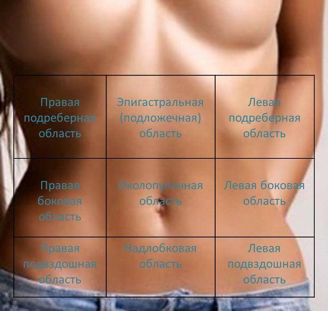 Алгоритм проведення пальпації живота