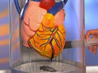 Аналіз крові на вміст креатинфосфокінази (кфк)