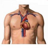 Атеросклероз аорти і серцевих судин (коронарний): виникнення, як лікувати