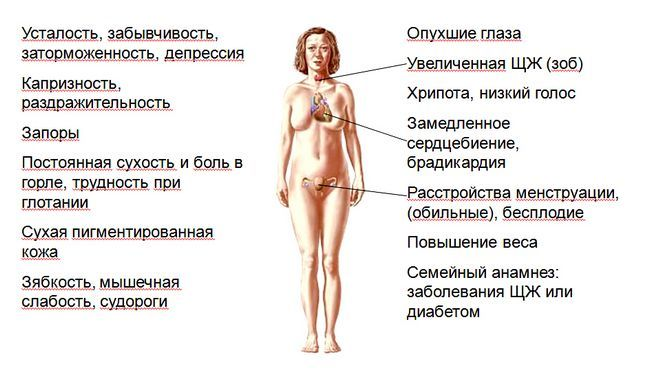 симптоми при захворюванні щитовидки