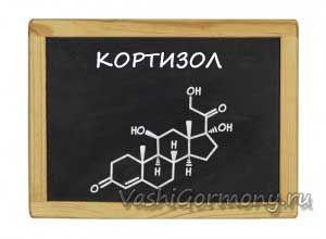 Схема-зображення кортизолу