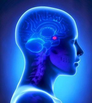 Хвороба Іценко - Кушинга, перевищення гормону АКТГ