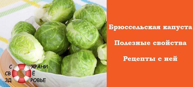 Брюссельська капуста. Корисні властивості і рецепти з бельгійським карликом