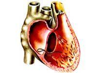 лівошлуночкова серцева недостатність