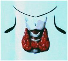 Дефіцит секреції гормонів щитовидної залози