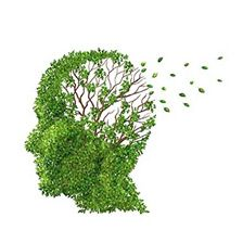 Атрофія мозку: причини і фактори розвитку, симптоми, терапія, прогноз