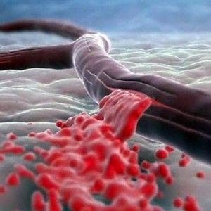 Фібрати: список препаратів, механізм дії, показання, застосування