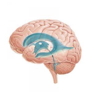 Гіпертензійного синдром: ознаки, лікування, причини, прогноз