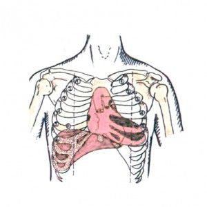 Межі серця при перкусії: норма, причини розширення, зміщення