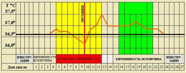 Календарний розрахунок овуляції