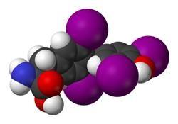Як підвищити теотропний гормон (ттг) до норми