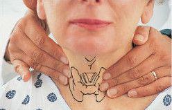 Як проводити пальпацію щитовидної залози