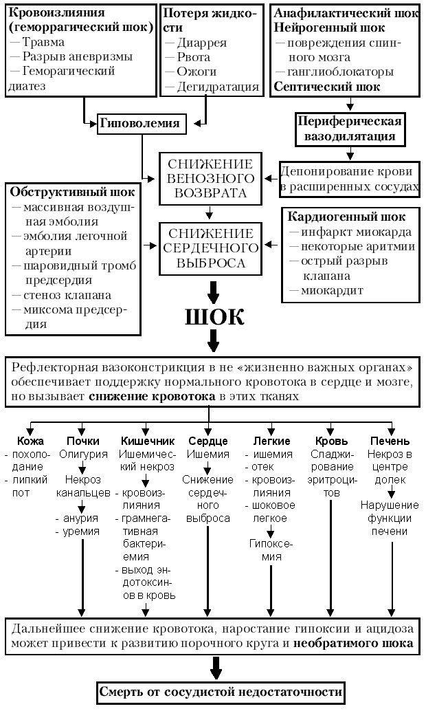 Кардіогенний шок: виникнення і ознаки, діагностика, терапія, прогноз