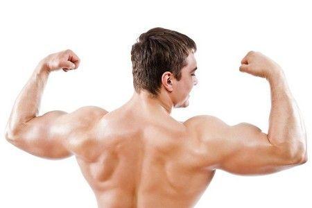 сильні м`язи