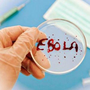 Лихоманка ебола: де зафіксована, ознаки, течію, чи можна вилікувати, профілактика зараження