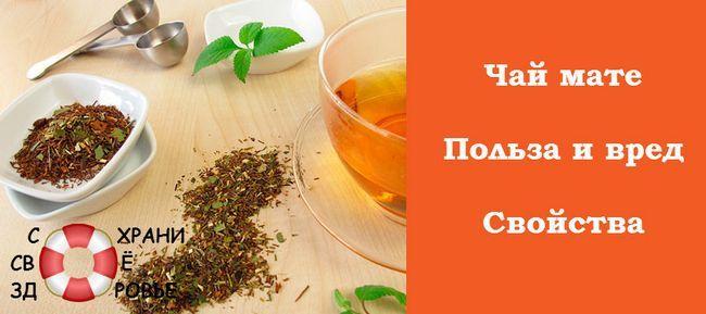 Мате - чай   з індіанських легенд. Користь і шкода напою з парагваю