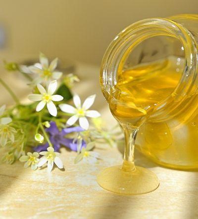 Мед еспарцетовий шкіру рятує, хвороби і старість хлистом виганяє!