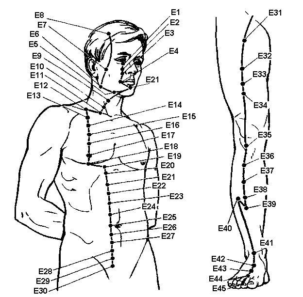 Акупунктурні точки меридіана шлунка
