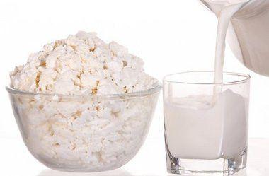 Молочний гриб з тибету - доступне лікування