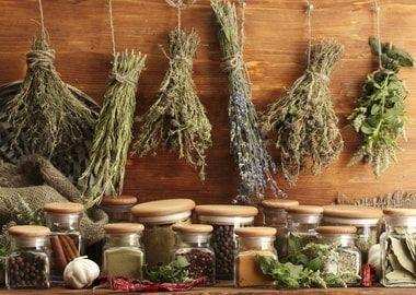 Лікарські трави від болю в горлі