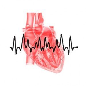 Порушення серцевого ритму: види, причини, ознаки, лікування