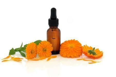 Настоянка календули подарує вашому волоссю свіжість і здоров`я