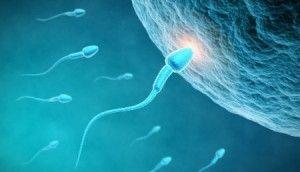 Несподівана вагітність при відсутності місячних 98