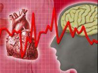 Серце, головний мозок і ЕКГ