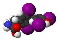 Норма ттг у дітей: високий і низький рівень гормону