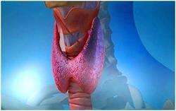 Основні симптоми захворювання щитовидної залози