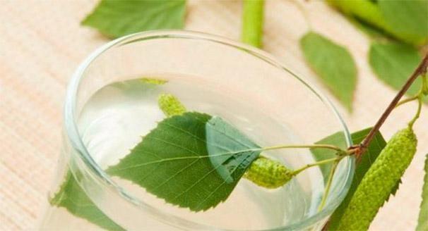 Відвар з листя берези дозволяє все здоров`я курйози