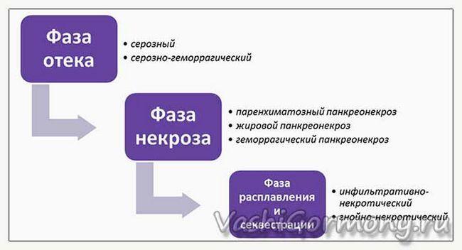 запалення підшлункової залози - фази (схема)