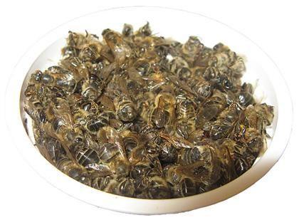 Бджолиний підмор - вірний здоров`я страж і дозор!