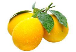 limon_01