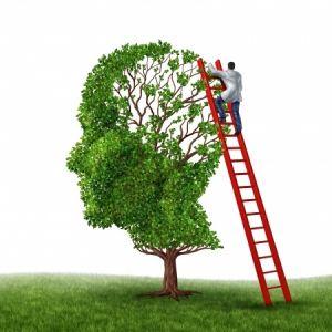Профілактика інсульту: провісники колапсу, діагностика, спосіб життя, оздоровлюючі кошти