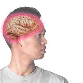 Енцефаліт: причини, ознаки, лікування, профілактика - кліщового, вірусного