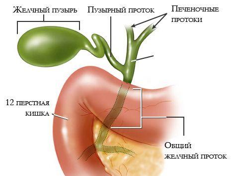 Специфіка лікування бескаменного холециститу