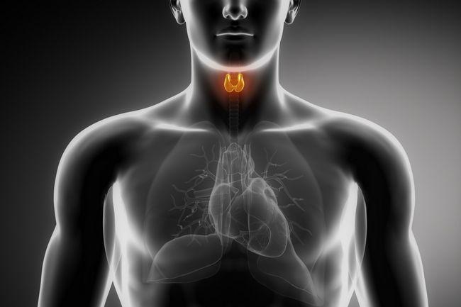 рентген щитовидної залози