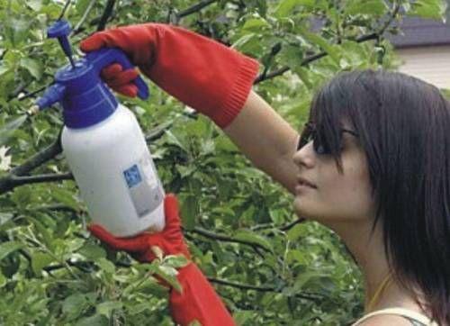 Хімікати для городу