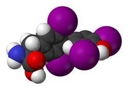 Тиреотропний гормон