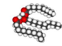 Тригліцериди в біохімічному аналізі крові