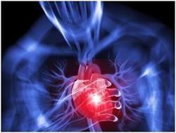 Хвороба серцево-судинної системи