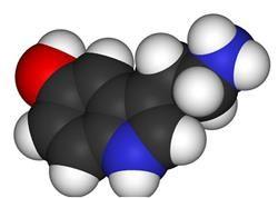 Рівень гормону ттг при вагітності
