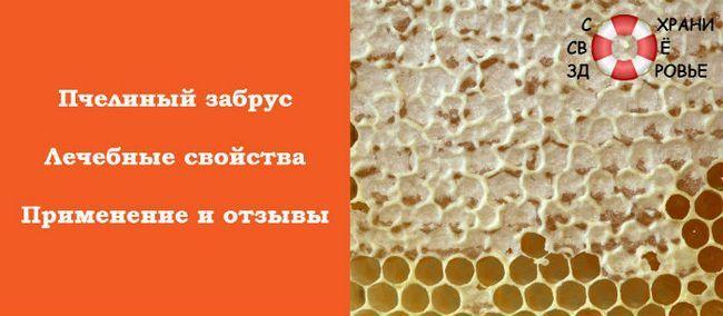 Забрус: його лікувальні властивості і застосування