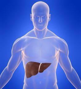 Жировий гепатоз печінки